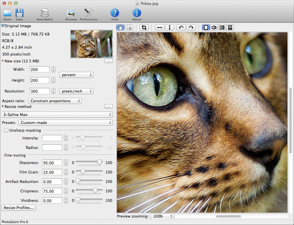 واجهة برنامج تكبير الصور PhotoZoom للكمبيوتر