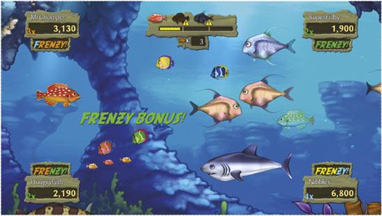 خطوره اللعب في لعبة Feeding Frenzy 2 السمكه
